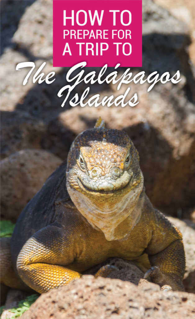 How To Prepare For A Trip To The Galapagos Islands